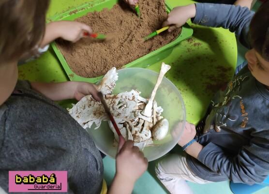 Buscando huesos de dinosaurios